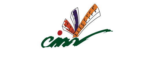 City Motors Group logo with name